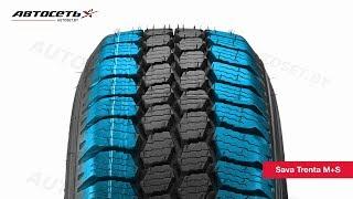 Обзор зимней шины Sava Trenta M+S ● Автосеть ●