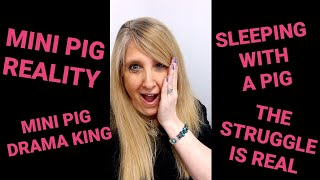 THE UNEDITED REALITY OF LIVING & SLEEPING WITH A NOT SO MINI MINI PIG 😱