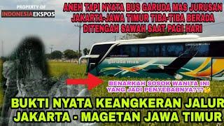 Bus Garuda Mas Jakarta - Magetan Alami Hal Aneh Hingga Masuk Sawah