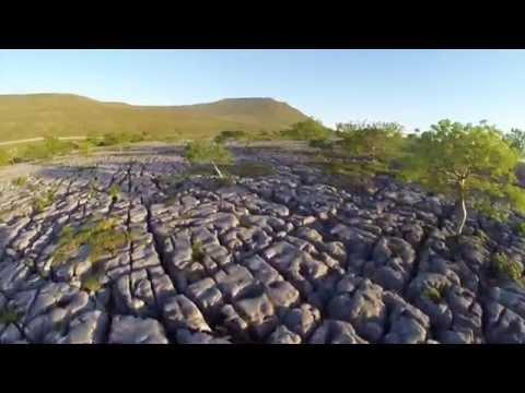 Ingleborough's Nature Reserves