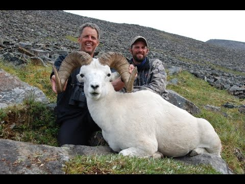 Outdoor Quest TV NWT Dall Sheep 2011