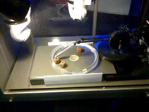 Public Testing in MR Interface for Telerobotics Concept