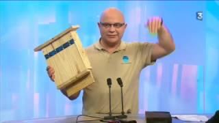 Construire votre gîte à chauve-souris