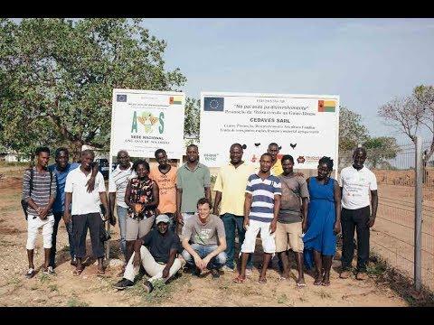 """Guinea-Bissau: """"Mettiamo Le Ali Allo Sviluppo"""""""