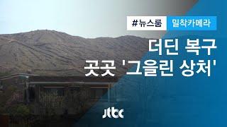 [밀착카메라] '그을린 상처' 아직인데…노심초사 '강원도의 봄' / JTBC 뉴스룸