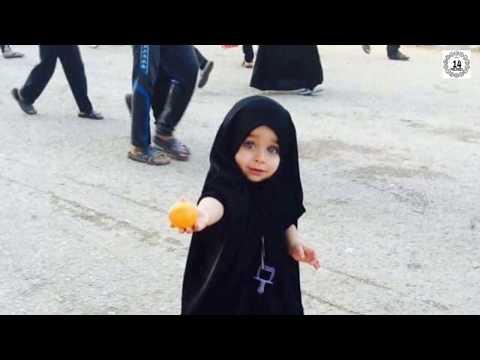 Arbaeen walk 2017 | Najaf to karbala Walk | Karbala | 1439 Hijri
