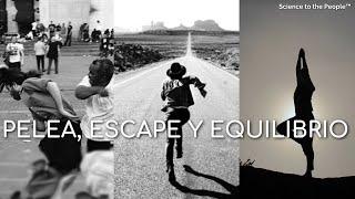 PELEA, ESCAPE Y EQUILIBRIO