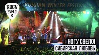Смотреть клип Ногу Свело! - Сибирская Любовь