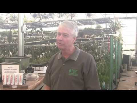 Paul Isley - Rainforest Flora - Talk To Long Beach Garden Club