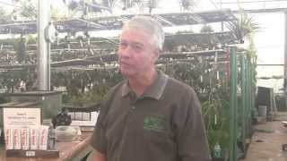 Paul Isley / Rainforest Flora - Talk To Long Beach Garden Club
