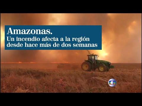 arde-el-amazonas-durante-más-de-15-días-y-surgen-las-críticas-hacia-bolsonaro-por-la-deforestación