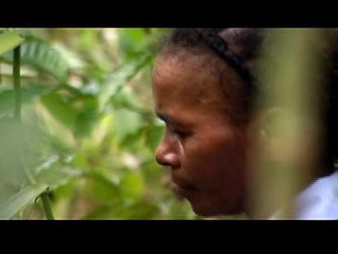 Madagascar: Vanilla farmers