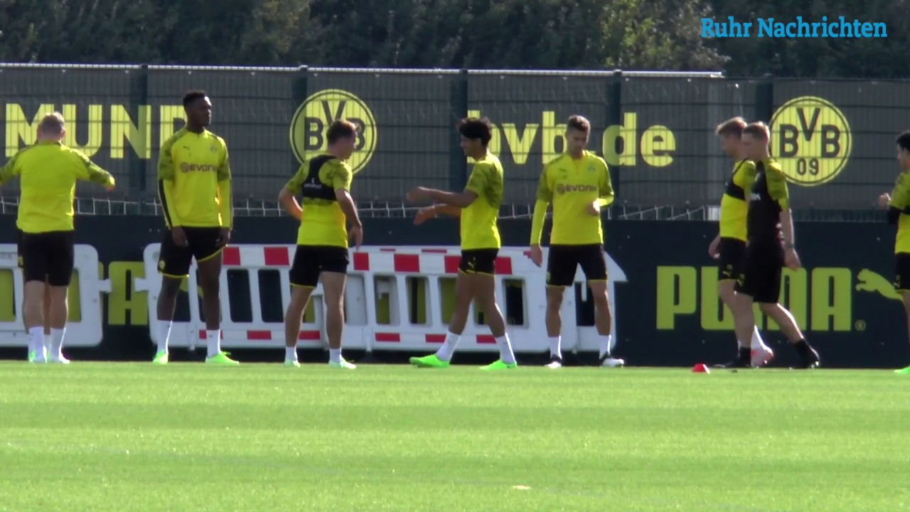 Piszczek und Morey sind zurück im BVB-Training