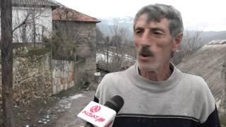 Rauviq, ujqërit mysafir të rregullt të fshatit