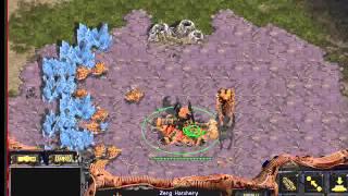 Starcraft Brood War [FPVOD] za_gcc-зерг, урок 1 (знакомство, гидрапуш с 3 хатчей)