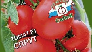 Где купить качественные семена?(, 2012-04-27T11:10:31.000Z)