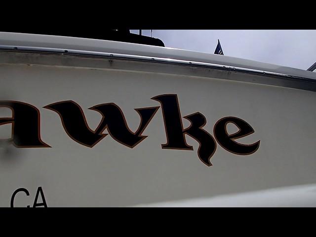 Black Hawke 08/10/19