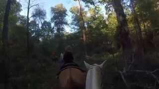 GoPro HD: Santa's Stables Horseback Riding