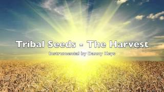 Tribal Seeds - The Harvest - Instrumental Cover by Danny Keys - Karaoke Version
