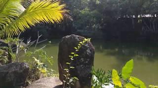 Хайнань Парк Янода Центральное озеро Hainan Yanoda park ЧАСТЬ 5
