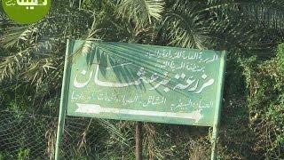 Усман ибн Афвандын (р.а.) 1413 жылдан бери иштеп келген инвестициясы / Устаз Абдишукур Нарматов