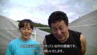 塩原高原大根20160909(市村農園)