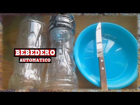 Bebedero para aves automatico y casero 100 reciclable for Bebederos para aves jardin