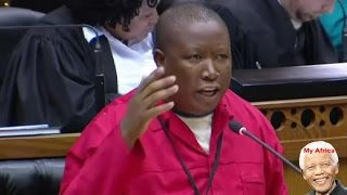 Julius Malema Blames Zuma And His Son For Xenophobic attacks.