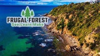 Tell Your Story 🌄 | DJI Mini 2 & Filmora x | Frugal Forest  🌲