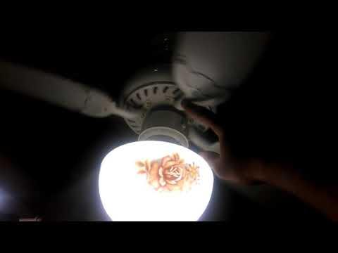 Hampton Bay Grayton 1.5 Ceiling Fan (With It's New Globe)