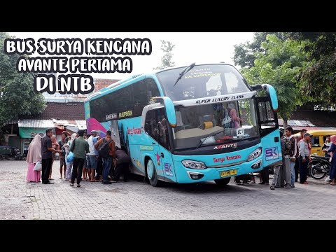 NAIK SURYA KENCANA AVANTE BIMA - MATARAM | Bus Ini Tidak Ada di Pulau Jawa & Crewnya Sangat Ramah