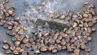 Roasting Chestnuts. Slovenia and Italy Street Food