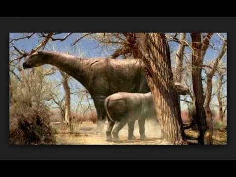 Indricotherium, mamífero gigante. Indricotherium
