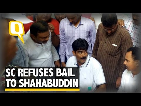The Quint: Shahabuddin Warns Nitish Kumar After Failing To Secure Bail