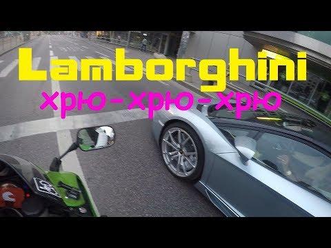 Lamborgini хрю-хрю-хрю - Видео онлайн