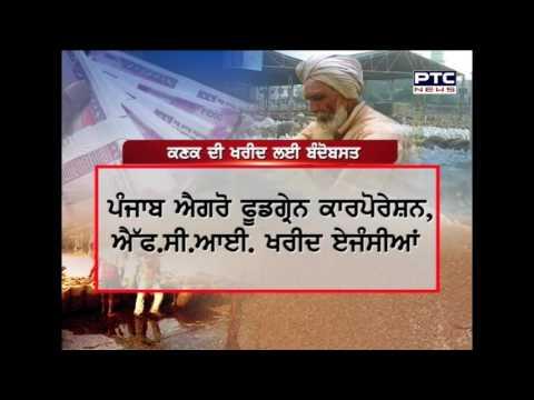 Wheat Procurement in Punjab   A Report