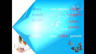 Видеоурок французского языка - Романтическая смс . Un sms pour toi