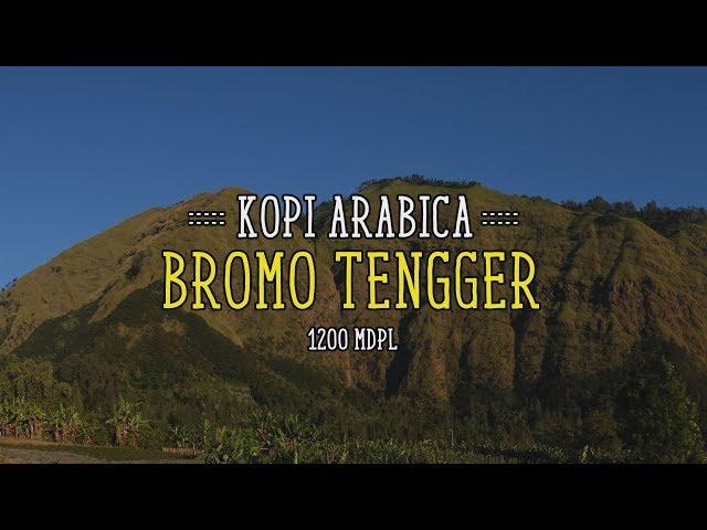 Kopi Arabica Bromo Tengger | Aroma Rempah khas kopi Jawa Timur | Review Kopi Indonesia