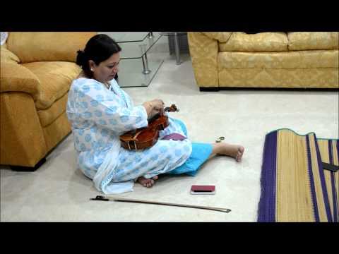 How an artist prepares for a concert: Following Viji Krishnan