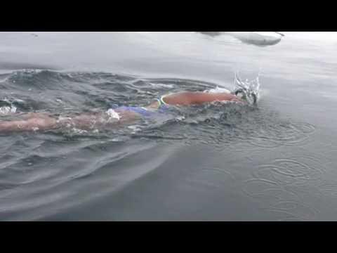 World Record swim in Antarctica ocean | Longest distance swim in Antarctica | Bhakti Sharma,Udaipur.