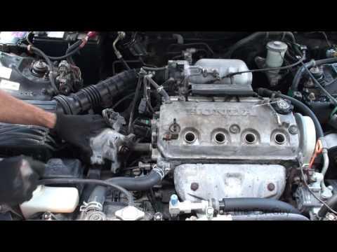 Honda d16 distributor leaking oil simple easy fix