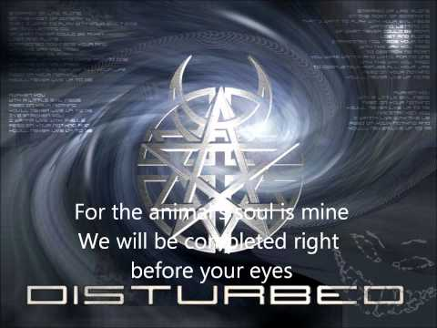 The Animal Disturbed lyrics
