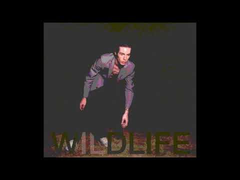 The Icarus Line - Wildlife