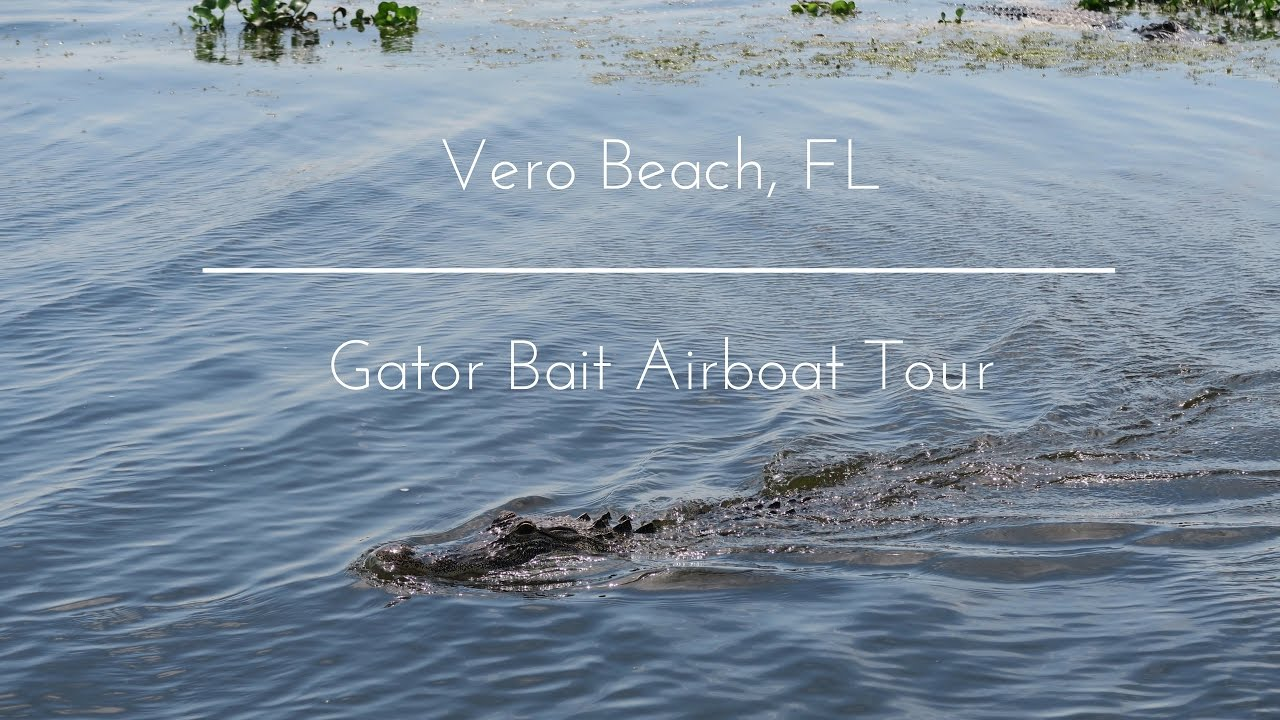 Gator Bait Airboat Tour Vero Beach Fl