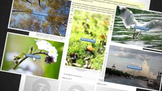 Что такое онлайн-фотошкола? Обучение фотографии.