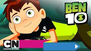 Ben 10 | Ben chce zwierzaka! | Cartoon Network