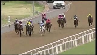 Vidéo de la course PMU PRIX WWW.TABGOLD.CO.ZA MAIDEN PLATE