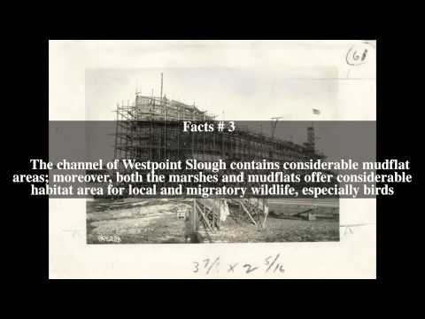 Westpoint Slough Top # 5 Facts