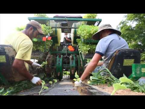 Cool Jobs: Organic Farming at Earth Spring Farm in Carlisle, Pa