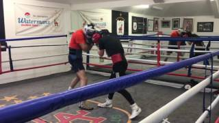 Josh Taylor Boxing Training Highlights